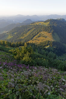 Germany, Upper Bavaria, Berchtesgadener Land, Hoher Goell, sundown - LBF000624