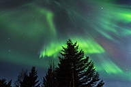 Norway, Lofoten, Polar lights (aurora borealis) on Gimsoy - STS000339