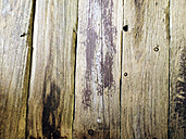 Detail of a wooden door to a shed, Heeslingen, Lower Saxony, Germany - MSF003474