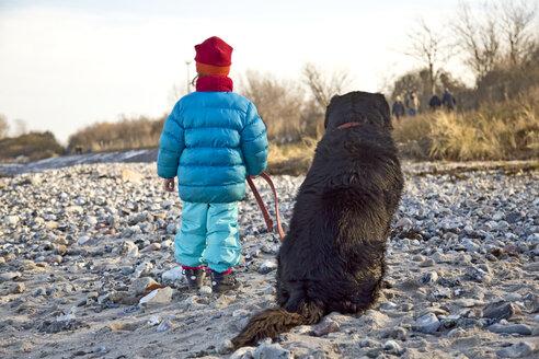 Germany, Schleswig-Holstein, Kiel, little girl and labrador on the beach - JFEF000325