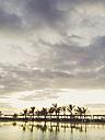 Spain, Canary Islands, La Palma, Hotel pool - MS003423