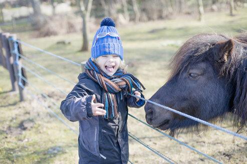 Germany, Mecklenburg-Western Pomerania, Ruegen, little boy feeding pony - MJ000955