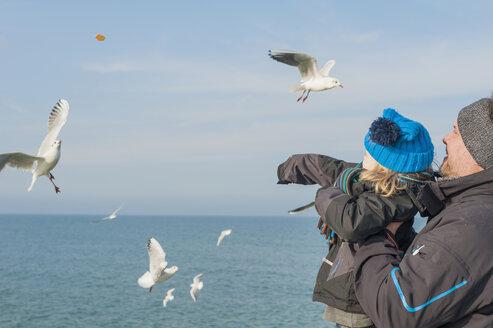 Germany, Mecklenburg-Western Pomerania, Ruegen, father and son feeding seagulls - MJF000943