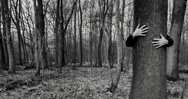 Two hands hugging a tree - HCF000031