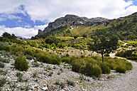 Spain, Balearic Islands, Mallorca, Serra de Tramuntana - SCH000148