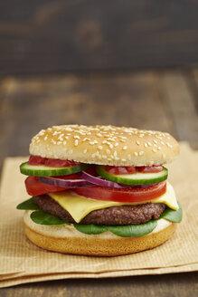 Cheeseburger, close-up - ECF000466