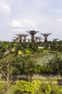 Asia, Singapore, Marina Bay, Gardens by the Bay, Supertrees in the park - THA000162