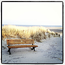 Beach / dunes with bench Langeoog, Lower Saxony, Germany - EVGF000428