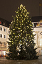 Germany, North Rhine-Westphalia, Bonn, Christmas tree at town hall - WIF000498