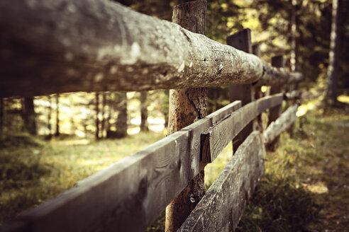 Italy, Dolomite Alps, old fence near Lago di Dobiacco - VTF000175