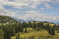 Austria, Lungau, forest and mountains - KVF000040