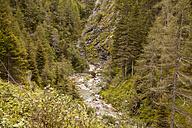Austria, Lungau, alpine brook - KVF000034