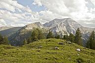 Austria, Lungau, alpine landscape - KVF000054