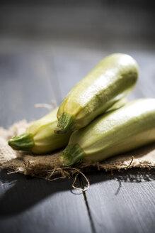 White zucchini - MAEF008191