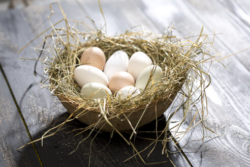 Easter nest with organic egg on dark wood - MAEF008206