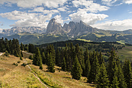 Italy, South Tyrol, Dolomites, Langkofel group, Seiser Alm - RJF000040