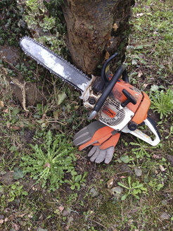 Chainsaw with gloves in front of tree, Konstanz, Baden-Wuerttemberg, Germany - JED000160