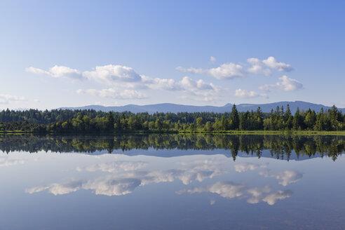 Germany, Bavaria, Upper Bavaria, Sachsenkam, Kirchsee lake - SIEF005191