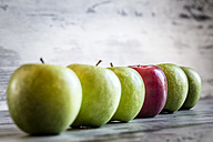 Red apple in a row of green apples - SARF000399