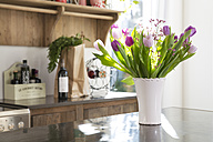 Bunch of tulips on kitchen counter - FKF000464