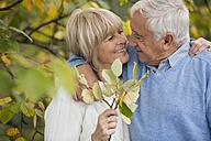 Portrait of senior in love - WESTF019221