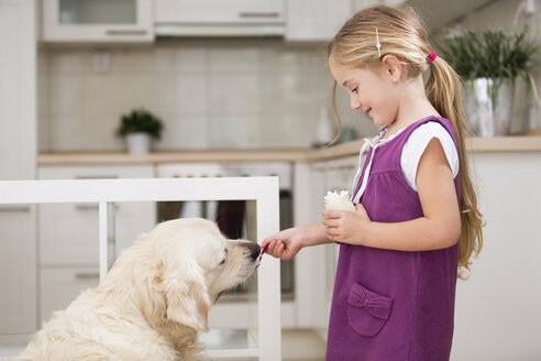 Little girl feeding dog with yogurt - WESTF019116