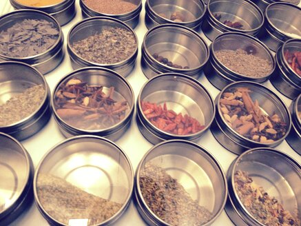 Different spices on a refrigerator, Munich, Bavaria, Germany - RIMF000197