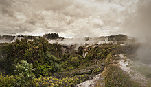 New Zealand, Taupo Volcanic Zone, Craters of the Moon, geothermal field - WV000520