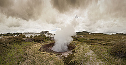 New Zealand, Taupo Volcanic Zone, Craters of the Moon, geothermal field - WV000521