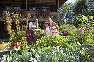 Austria, Altenmarkt, Mother and child watching farmer in garden - HHF004785
