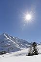Austria, Vorarlberg, Bregenz Forest, Lechtal Alps, Mittagsspitze against the sun - SIEF005222