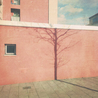 Surreal shade of a tree on a house wall, Munich, Bavaria, Germany - GSF000858