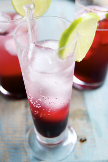 Elderberry spritzer with elderberry syrup and mineral water - HAWF000040