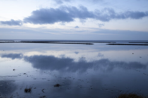 Germany, Lower Saxony, East Frisia, Norden, Norddeich, Lower Saxon Wadden Sea National Park in the evening - WIF000547