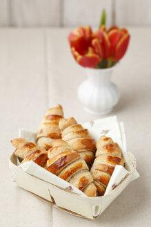 Homemade mini croissants, studio shot - ECF000487