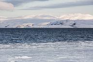 Norway, Barents Sea near Kirkenes - SR000498