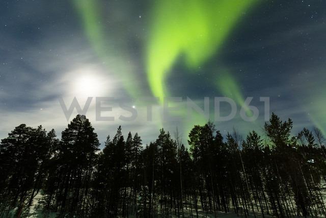 Aurora borealis in Finnland near Saariskalae - SR000481