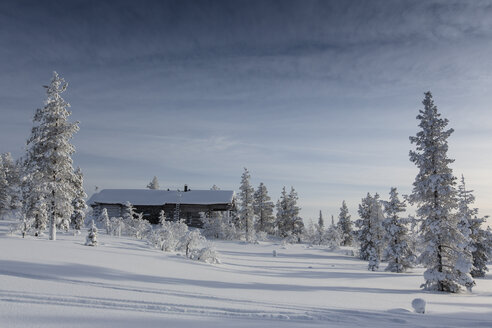 Finnland, near Saariselka, Log cabin between snow covered trees - SR000474