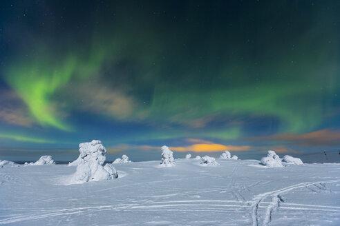 Scandinavia, Finland, Kittilae, Polar lights, Aurora borealis - SR000519