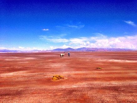 Argentina, Andes, near Tilcara, salt desert - AVSF000136