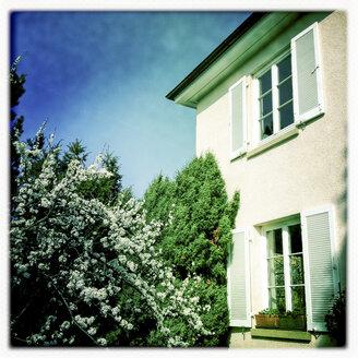 Germany, Baden-Wuerttemberg, Stuttgart, single family home, garden, flowering fruit trees, shutters, window - WDF002489