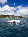 Caribbean, Lesser Antilles, Sainte Anne, Martinique, Sailing boat - AM002159