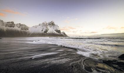 Iceland, Black sandy beach of Stokksnes - STCF000029
