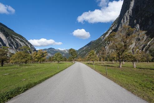 Austria, Tyrol, Alpine Park Karwendel, Road through the large maple floor - RJF000095