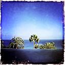 Overlooking the Atlantic Ocean, Fuerteventura, Spain - DRF000650