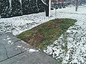 Hungary, Tolna, Bonyhád, traces of a weggefahrenen cars in the snow - BRF000541
