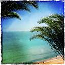 Overlooking the Atlantic Ocean, Fuerteventura, Spain - DRF000656