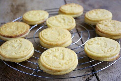 Lemon cookies on a cooling rack - HAWF000117