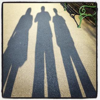Silhouette, shadows of a family, Austria - DISF000801