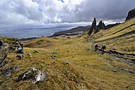 UK, Scotland, Landscape on Isle of Skye - FD000056